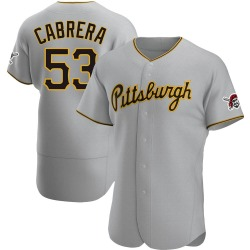 Melky Cabrera Pittsburgh Pirates Men's Authentic Road Jersey - Gray